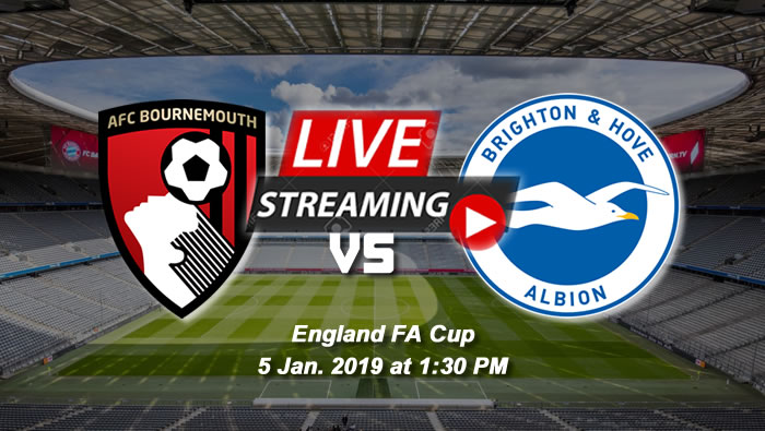 Brighton & Hove 3-1 Bournemouth | 5th Jan. 2019 - Football Highlights & Goals - England FA Cup