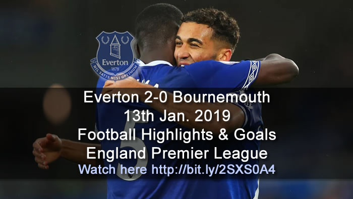 Everton 2-0 Bournemouth | 13th Jan. 2019 - Football Highlights and Goals - England Premier League