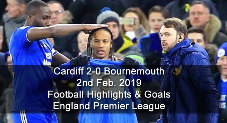 Cardiff 2-0 Bournemouth - 2nd Feb. 2019 - Football Highlights and Goals - England Premier League